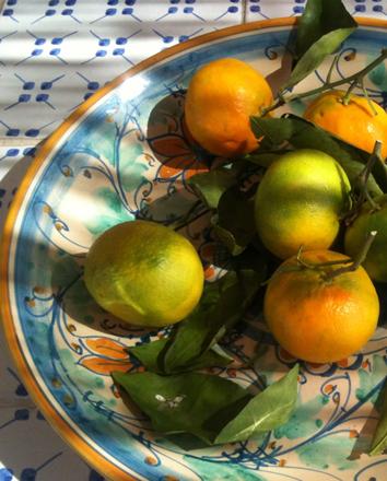 egenproducerad exklusiv olivolja Olio Alma från Casa Alma citron, blodapelsin och mandarin