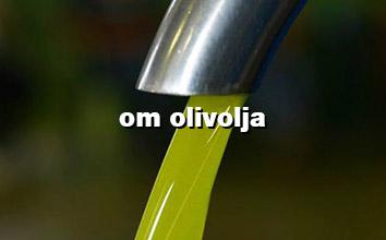 olivolja novello första olivoljan på säsongen