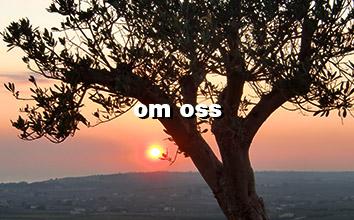 berättelsen om Olio Alma olivolja och Casa Alma