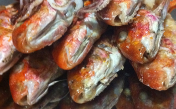 Olio Alma exklusiv olivolja och grillad fisk
